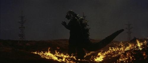 Mothra Vs Godzilla 040