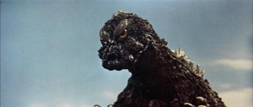 Mothra Vs Godzilla 055