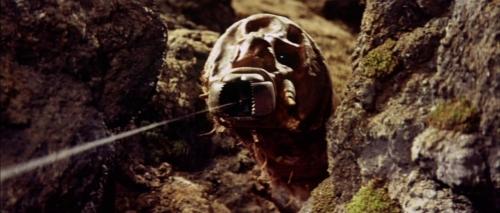 Mothra Vs Godzilla 057