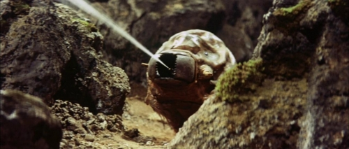 Mothra Vs Godzilla 059