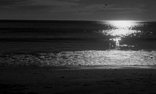 Night Tide 019