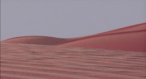 Pasolini 015