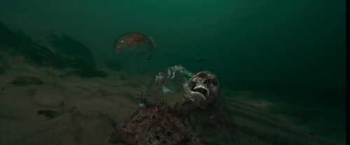 Piranha 043