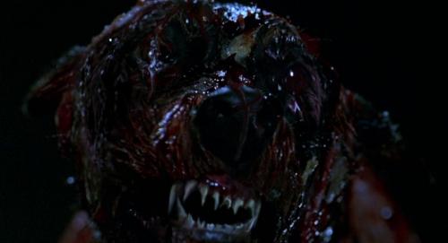 Resident Evil 037