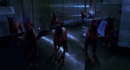 Resident Evil 038