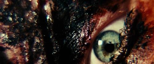 Resident Evil Extinction 047
