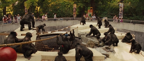 Rise of the Planet of the Apes 013