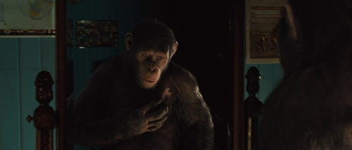 Rise of the Planet of the Apes 016