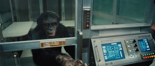 Rise of the Planet of the Apes 021