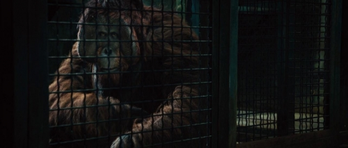 Rise of the Planet of the Apes 025