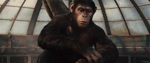 Rise of the Planet of the Apes 026