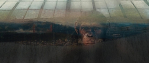 Rise of the Planet of the Apes 027