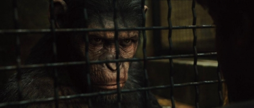 Rise of the Planet of the Apes 028