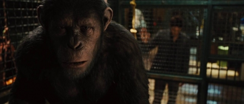 Rise of the Planet of the Apes 032