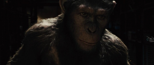 Rise of the Planet of the Apes 033