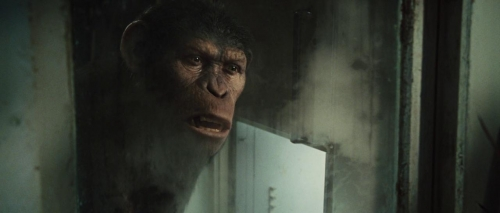 Rise of the Planet of the Apes 036
