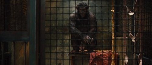 Rise of the Planet of the Apes 037