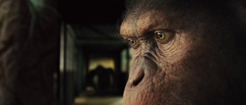 Rise of the Planet of the Apes 038