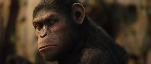 Rise of the Planet of the Apes 041