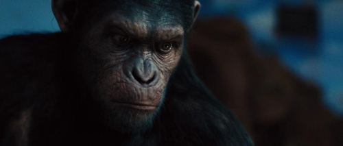Rise of the Planet of the Apes 044
