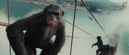 Rise of the Planet of the Apes 056