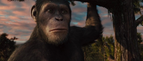 Rise of the Planet of the Apes 064