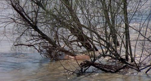 Rivers Edge 057