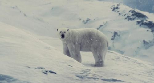 Snowpiercer 065