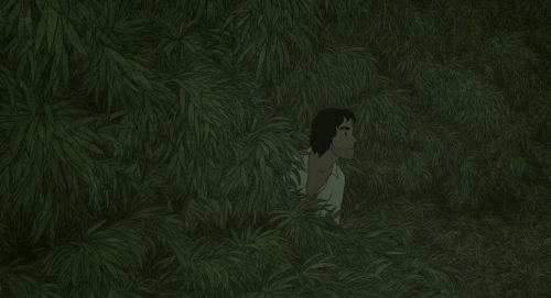 The Red Turtle 005