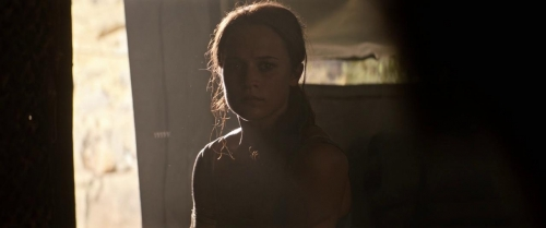 Tomb Raider 025
