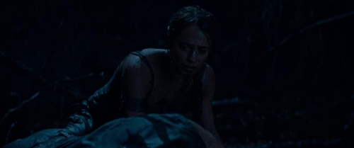 Tomb Raider 036