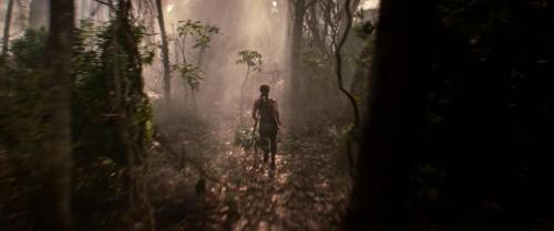 Tomb Raider 040