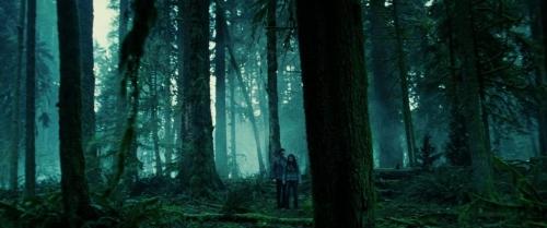 Twilight 023