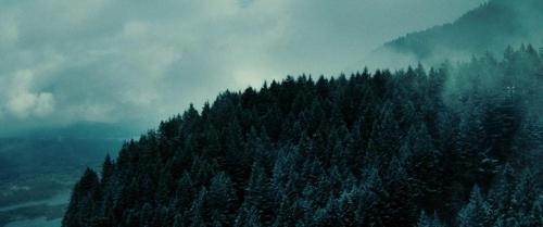 Twilight 027