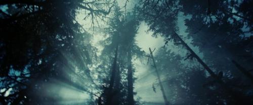 Twilight 028