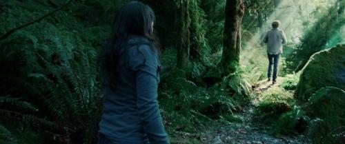 Twilight 029