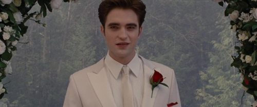 Twilight Breaking Dawn Part 1 014