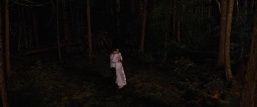 Twilight Breaking Dawn Part 1 020