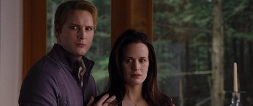 Twilight Breaking Dawn Part 1 064