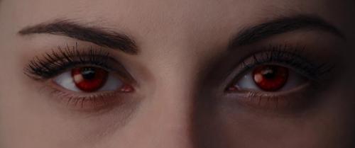 Twilight Breaking Dawn Part 1 065