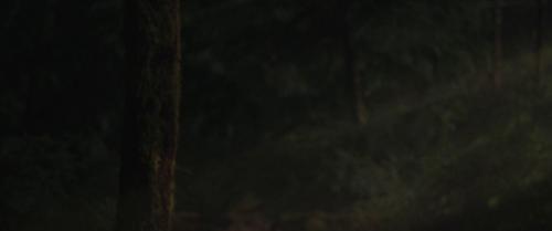 Twilight Breaking Dawn Part 2 020