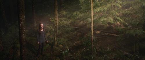 Twilight Breaking Dawn Part 2 023