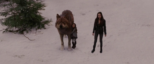 Twilight Breaking Dawn Part 2 026