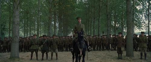 War Horse 021