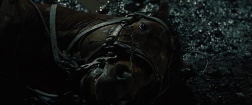 War Horse 036