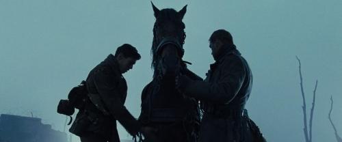 War Horse 040