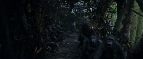 War for the Planet of the Apes 004