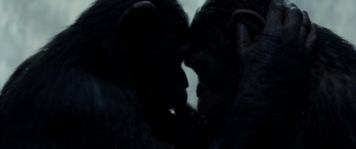 War for the Planet of the Apes 006