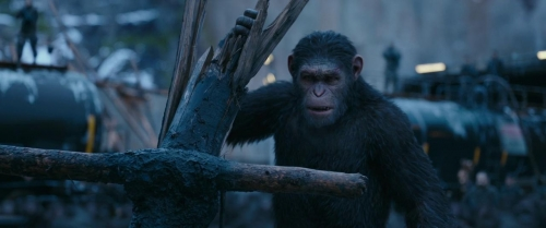 War for the Planet of the Apes 031