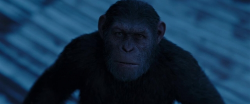 War for the Planet of the Apes 047